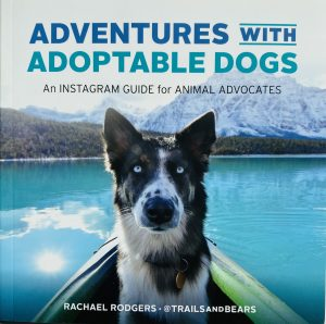 Book About Adventures with adoptable dogs